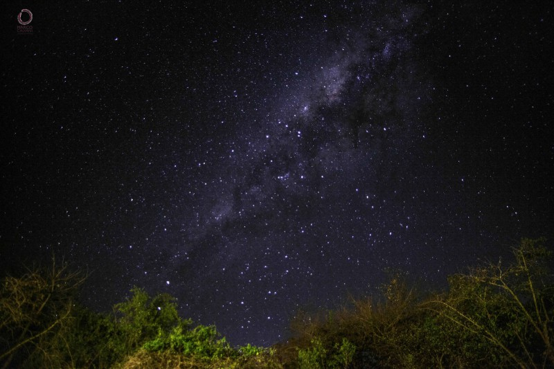 night sky at the kruger