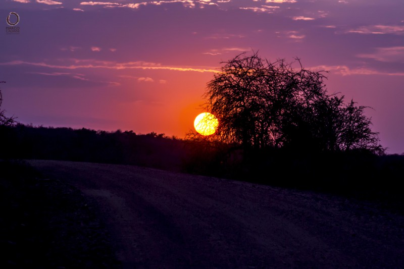 sunset by the kruger